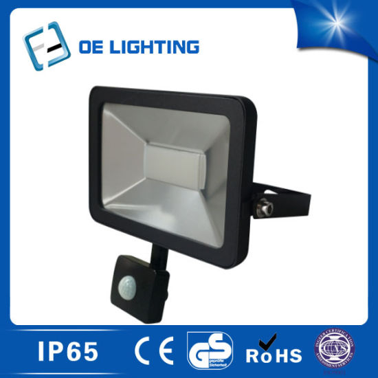Hot Selling 30W LED Floodlight with Sensor Factory Price