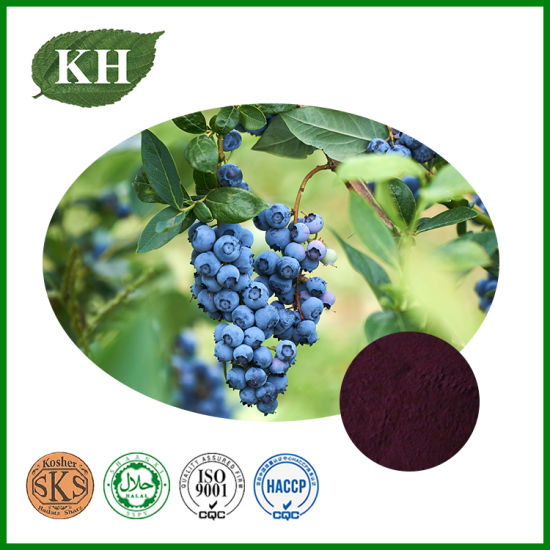 Blueberry Extract, Anthocyanidins, Anthocyanins, Pterostilbene
