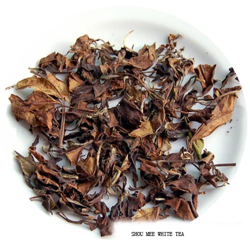Fuding Shou Mee White Tea