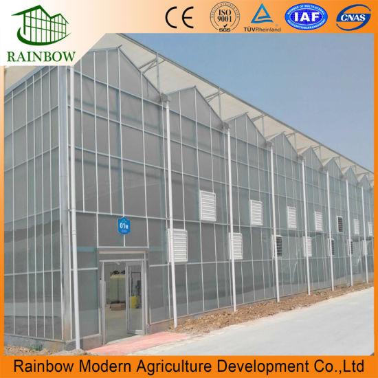 Venlo Type Open Roof Polycarbonate Greenhouse