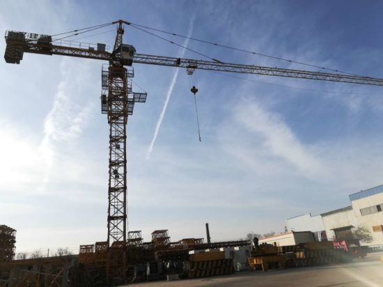 Qtz50 (5008) Hammerhead Tower Crane