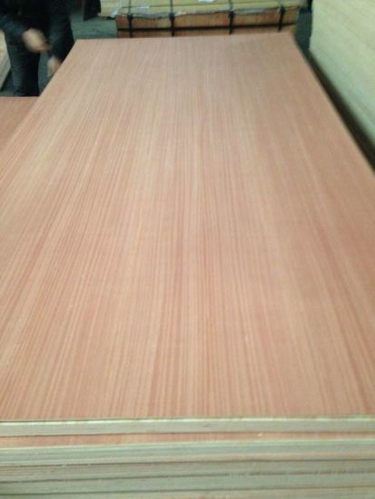 Natural Fancy Sapeli Plywood 4.6mm 4.8mm 15mm Sales in Mexico pictures & photos