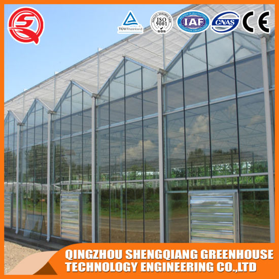 Agriculture Productive Tomato/Flower PC Garden Greenhouse for Sale