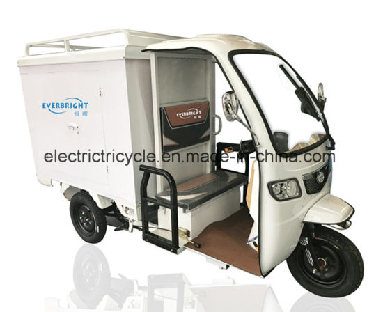 Mike Cargo Rickshaw 3 Wheel Cargo Electric Delivery Tricycle pictures & photos