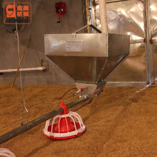 Full Set Automatic Poultry Farming Equipment for Broiler Shed