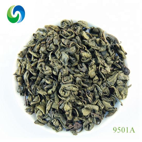 China Healthy Green Tea Gunpowder 9501 Tea Dubai Flavored Tea