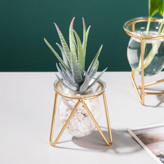 Handcraft Decorative Home Decor Water Pots Plant Terrarium Metal Stand Glass Hangers Indoor Air Planter Vase