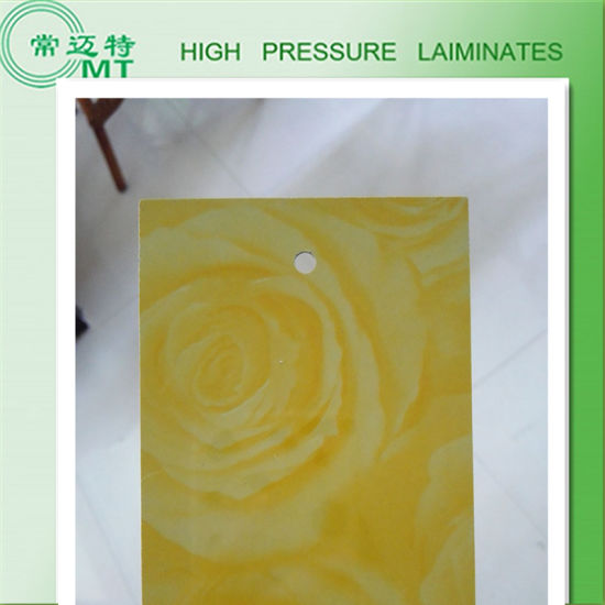 Plastic Laminated Sheet/Building Material/HPL pictures & photos