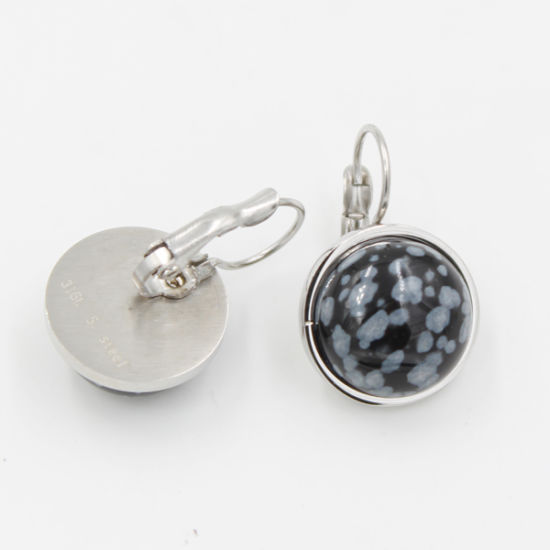 High Quality Fashion Stainless Steel Earring with Gemstones pictures & photos
