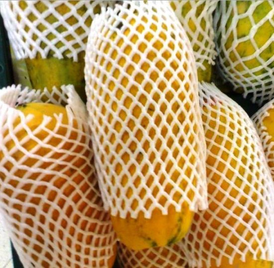 Eco Friendly Polyethylene Foam Packaging Guava Protection Net