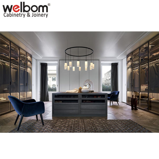 Welbom Luxury Custom Steel Framed Glass Doors Walk In Closet Wardrobe
