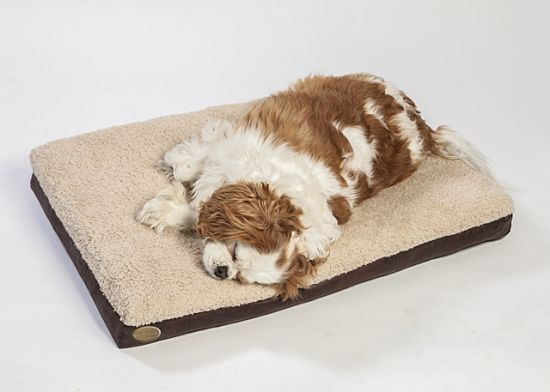 Special Design for Older and Weak Pet Beds Dog Cushions