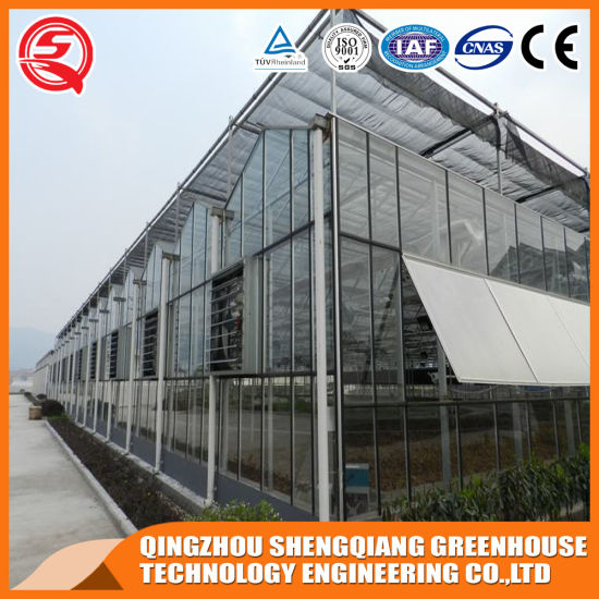 China Venlo Garden Grow Tent/Glass Greenhouse with Hydroponic Growing System