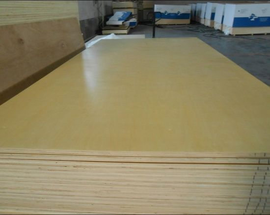 Birch Plywood with UV Paint for Furniture Usage pictures & photos