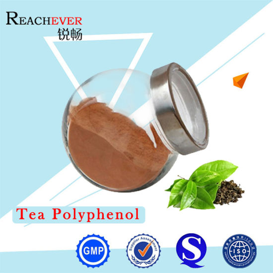 Natural Plant Extract Tea Polyphenols Extract with High Quality pictures & photos