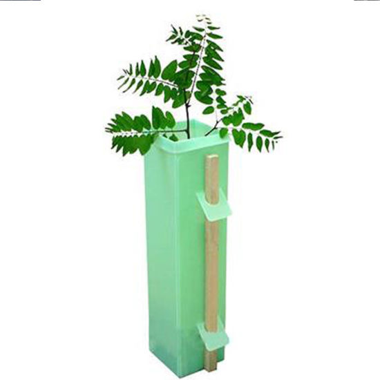 Reusable Square Coroplast Plastic/PP Plant Protector for Tree Protection