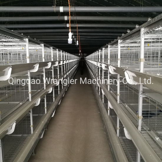 Factory Supply Broiler Poultry Farming Equipment for Brolier Broiler Chicken Cage