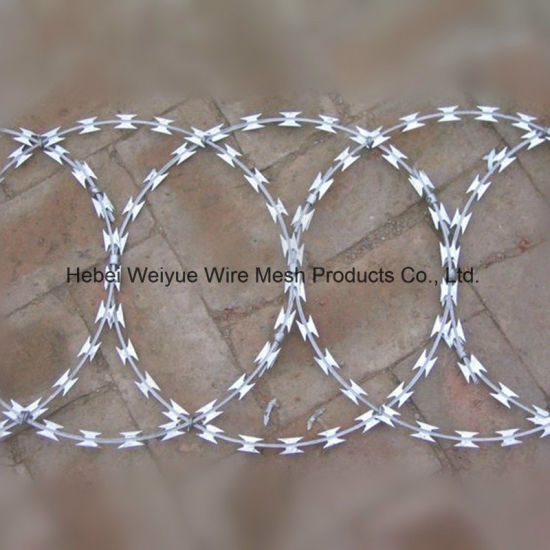 Galvanized/PVC Coated Iron Barbed Wire Concertina Razor Wire pictures & photos