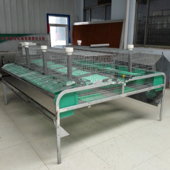 Two Layer Galvanized 12 Groups Mother Rabbit Cage pictures & photos