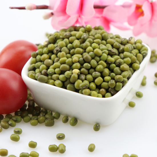 China 25kg Packing / Stanard Export Packaging Green Moung