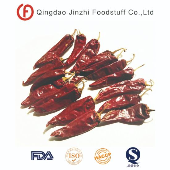 New Crop Dry Jinta Chilli