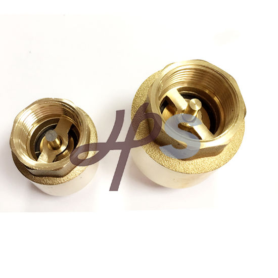 Brass Spring Check Valve with Brass Core pictures & photos