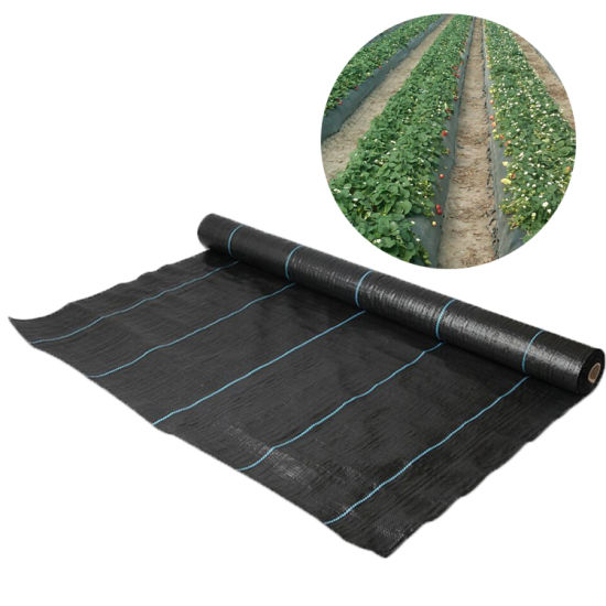 Bulk Products From China Weed Control Membrane Landscape Fabric Wholesale For Construction China Weed Mat And Weedmat Price Made In China Com