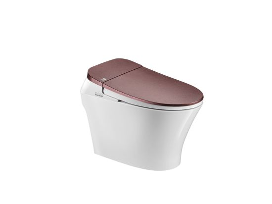China Supplier Sanitary Ware Back to Wall Ceramic Smart Toilet