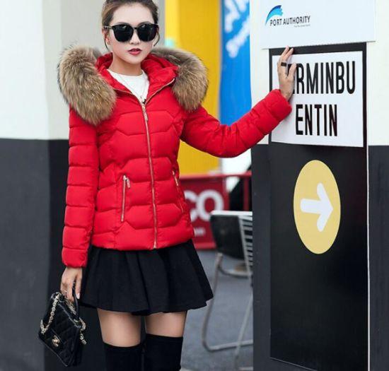 New Design Winter Women's Fur Collar Short Cotton Coat
