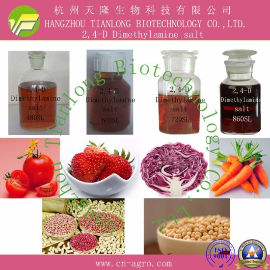 2,4-D Dimethylamine salt (96%TC, 480SL, 600SL, 720SL, 860SL)-Herbicide