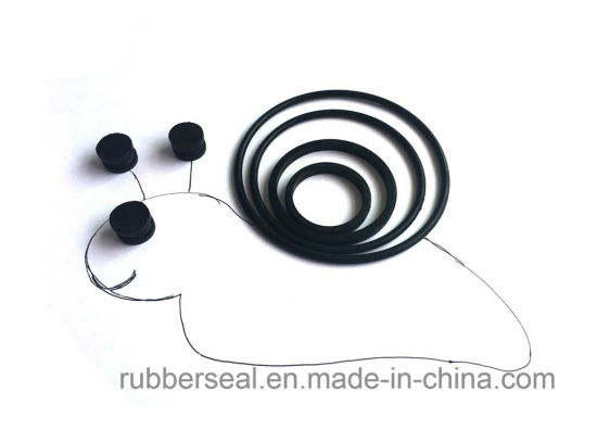 OEM NBR FKM Viton Oring Rubber O-Ring Oring pictures & photos