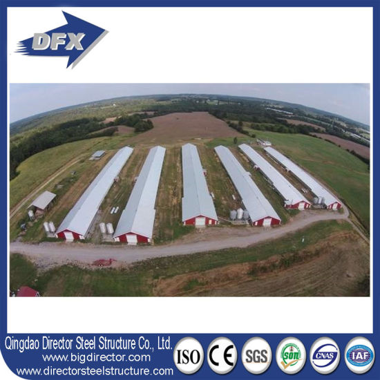Fast Construction Chicken Use and Open Side Poultry House pictures & photos