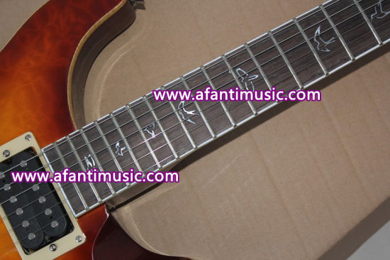 Mahogany Body & Neck / Afanti Electric Guitar (APR-047) pictures & photos