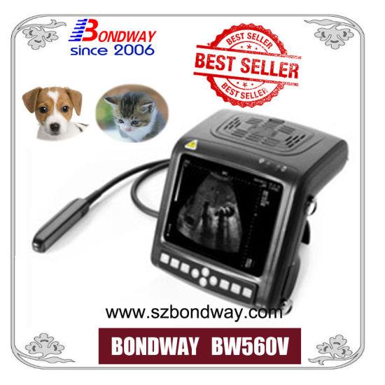 Veterinary Ultrasound Scanner 4D Doppler Medical Equipment