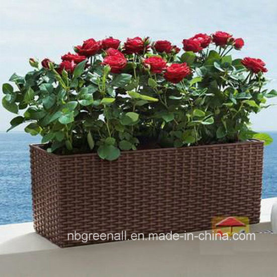 China Outdoor Garden Furniture PE Rattan Flower Pots - China Rattan on home depot planters, vintage planters, white watering can planters, stone planters, black planters, mahogany planters, cache pots and planters, granite planters, wicker looking planters, willow planters, large square planters, portable bag planters,