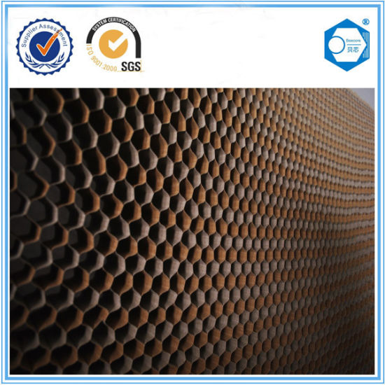 Practical and Widely Used Material Paper Honeycomb Pad in China pictures & photos