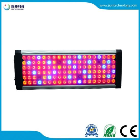 China New! Orpheus X2 LED High Power Full Spectrum Grow Lamp - China ...