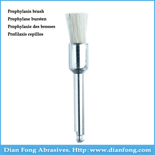 R5dw White Low Speed End Brushes Dental Bristle Polishing Brush pictures & photos
