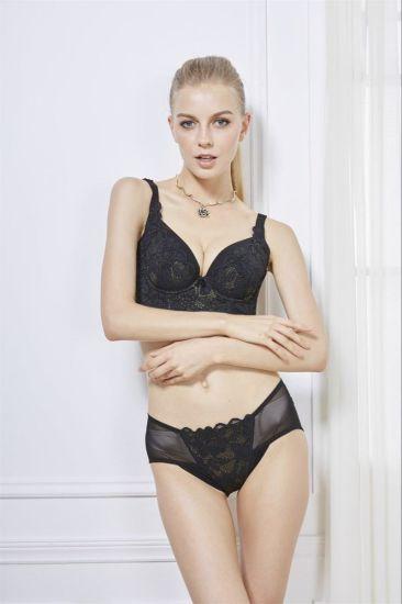 Good Quality Plus Size Bra and Panty E, F, G, H (CS62110)