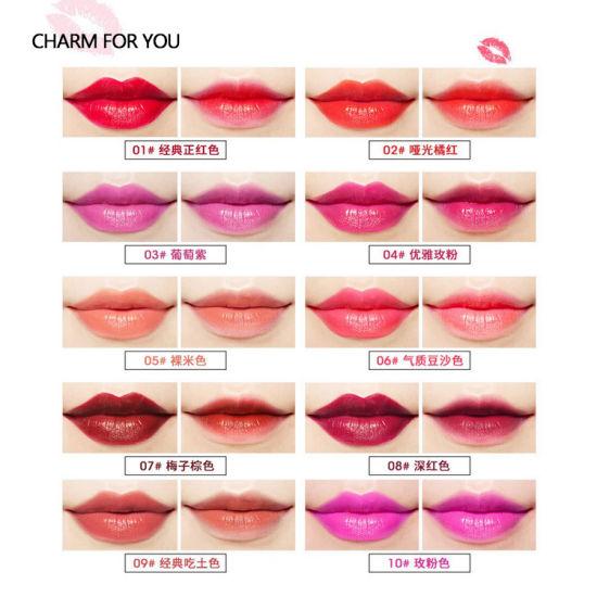 China Wholesale Oem Private Label Velvet Lipstick Matte Liquid Lip
