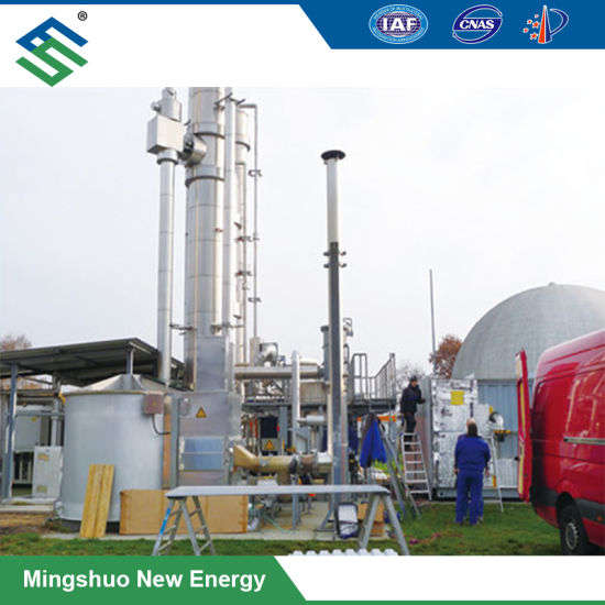 Biogas Purification System by Pressure Swing Adsorption Method