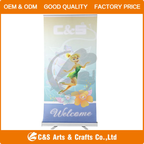 Display Flag, Roll Screen, Roll up Banner Stand pictures & photos