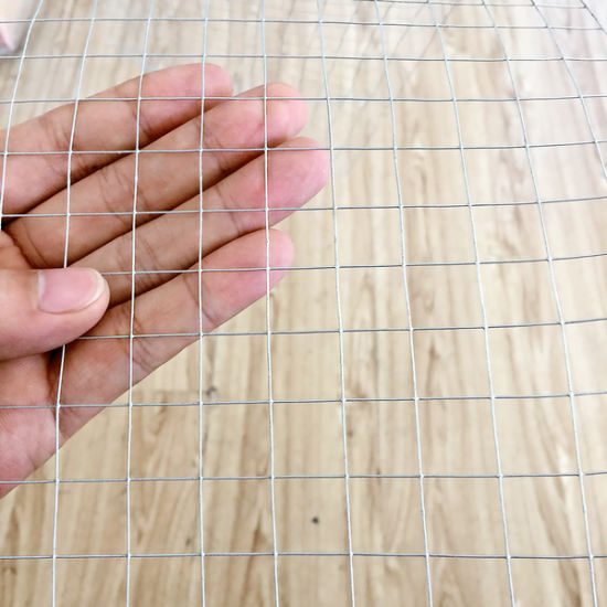 China Wholesale Steel Welded Wire Mesh Panel for Construction (WWMP)
