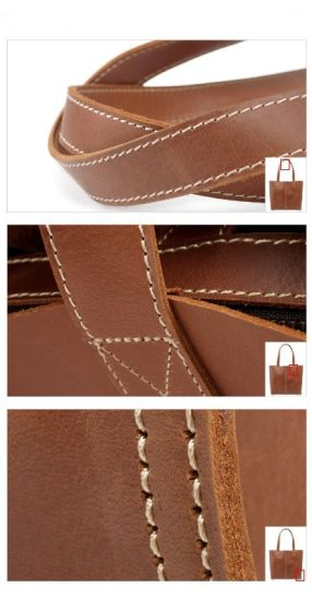 Full Grain Leather Fashion Designer Handbags (RS-6015) pictures & photos