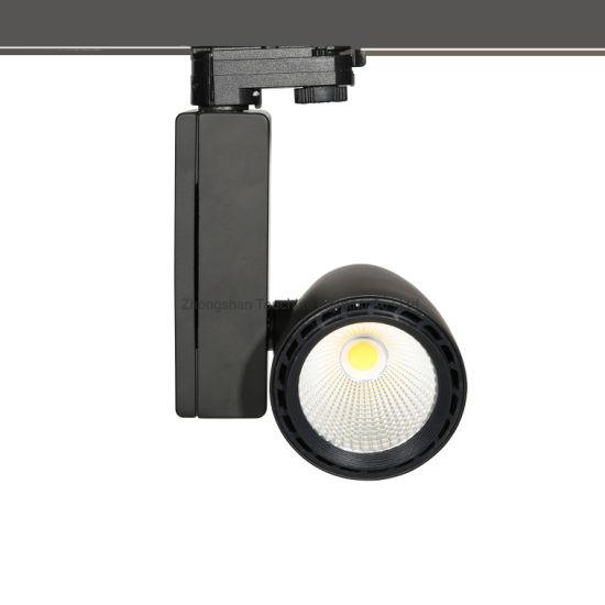 20W, 30W COB LED Track Spot Light (TLDT829)