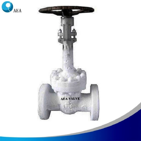 Cryogenic Ultralow Temperature Stainless Steel Fugitive Emissions Test Extended Bonnet OS&Y Flanged Flexible Wedge Gate Valve Globe Valve for Severe LNG Service