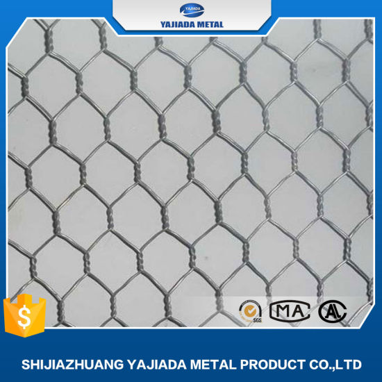Hexagonal Wire Mesh (chicken wire) From China Good Factory - China ...