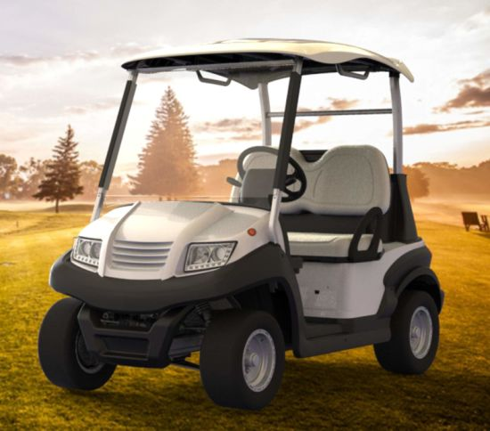 2 Seater Golf Car for Golf Course pictures & photos