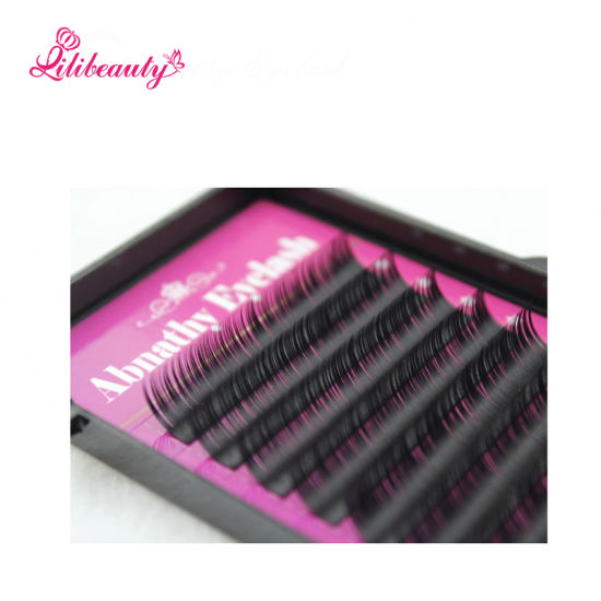 Wholesale Individual Eyelashes Extensions Hot Sale Silk Mink Lash False Eyelashes Customized Label pictures & photos