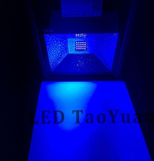 UV LED Curing Floodlight 365nm 50W